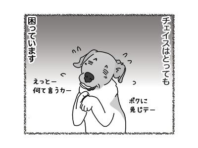 26072018_dog2.jpg
