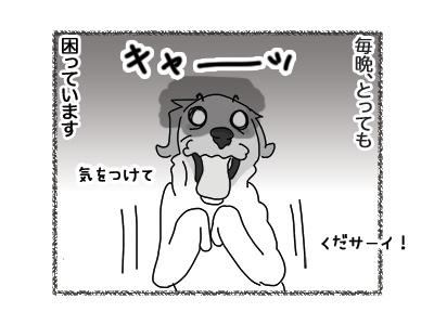 26072018_dog3.jpg