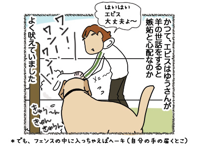 27062018_dog1.jpg