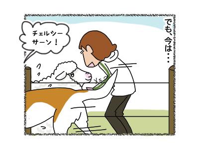 27062018_dog3.jpg
