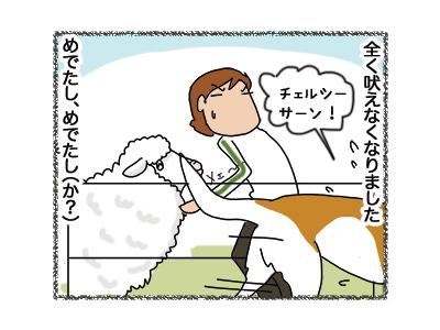 27062018_dog4.jpg