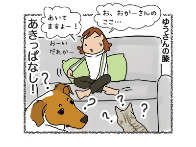 29062018_dog4.jpg