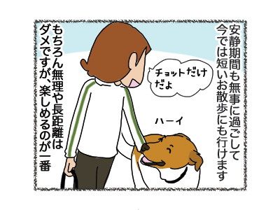 30072018_dog2.jpg