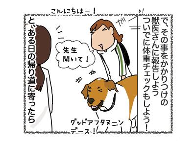 30072018_dog3.jpg