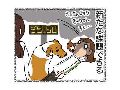 30072018_dog4.jpg