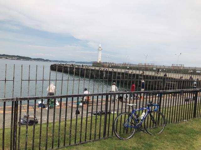 半年ぶりの自転車 (25)