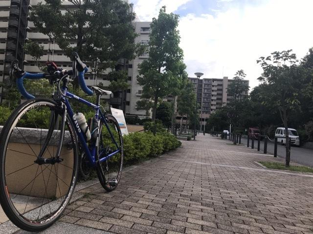 半年ぶりの自転車 (30)