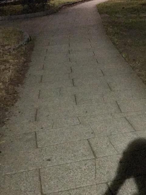 公園の夜道はご用心 (1)