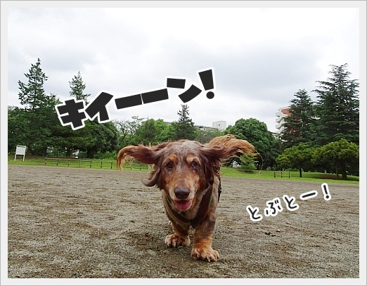 fc2_2018-06-21_002.jpg