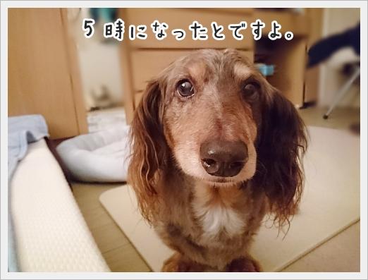 fc2_2018-07-23_01.jpg