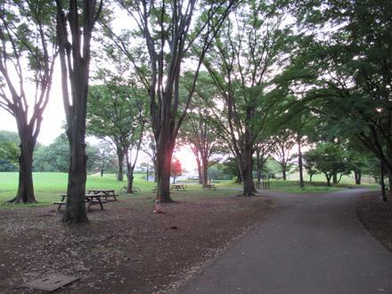朝の自由広場