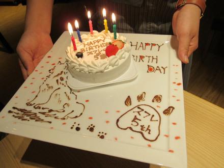 ビワドッグのお誕生日ケーキ