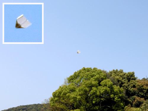 折り紙機、飛んでるトコ。 その2。