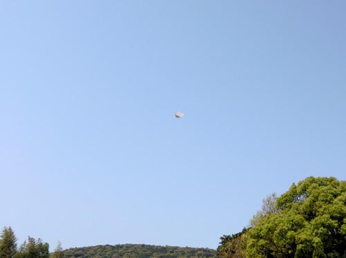 折り紙機、飛んでるトコ。 その1。