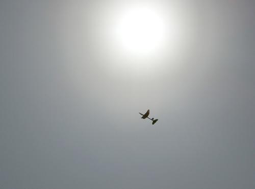 N-1842、飛んでるトコ。 その1。