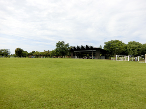 吉野ケ里歴史公園、弥生の大野。