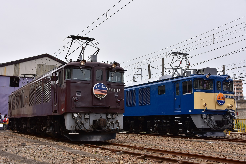 DSC_4694-2.jpg