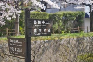 180331tetsugaku(16).jpg