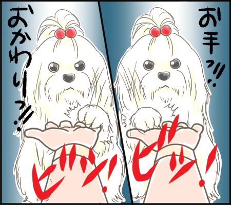 ぴぃちゃん2