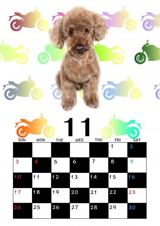 カレンダーテンプレ11月rossi_convert_20190218143919
