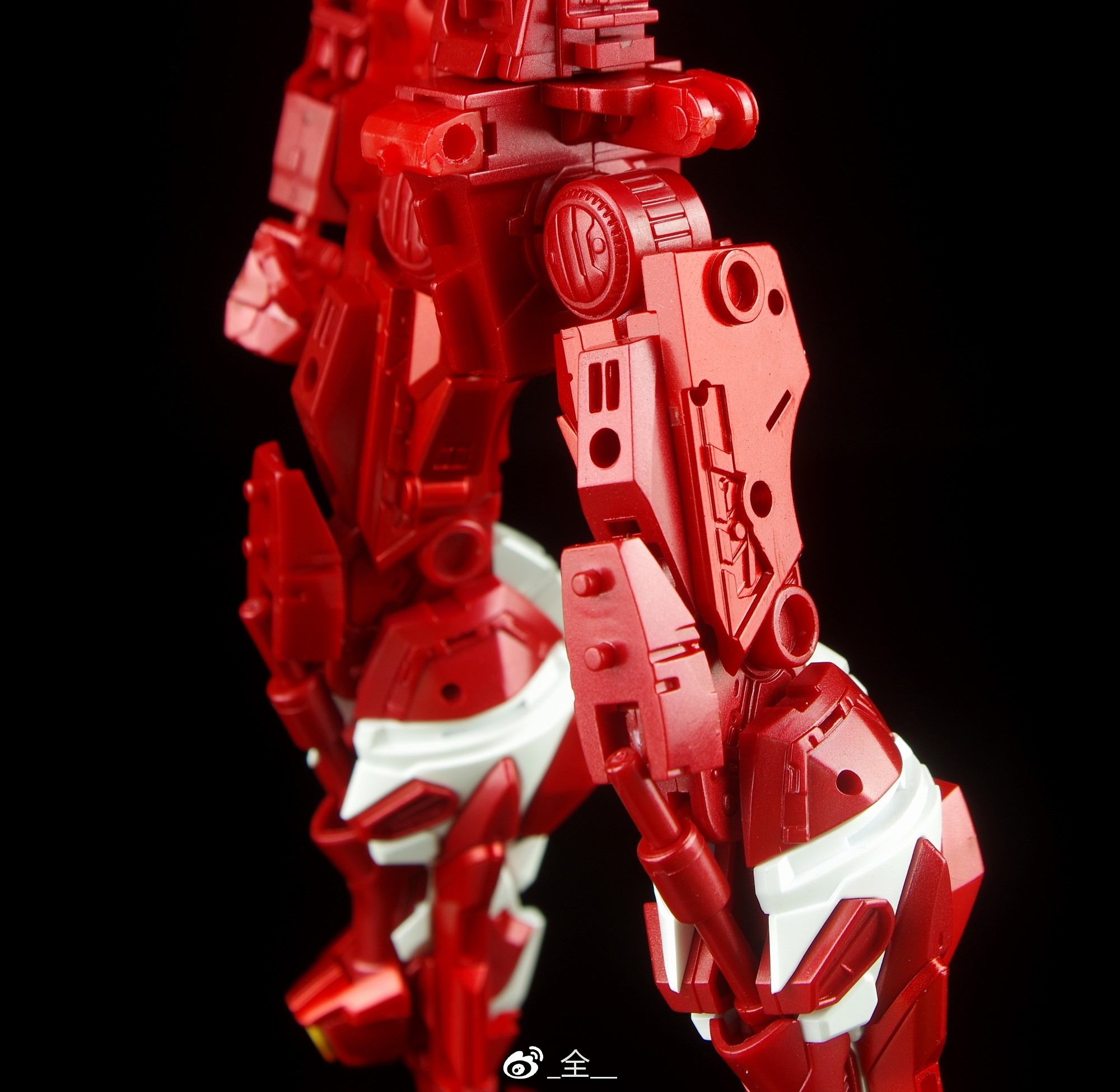 S246_3_MG_astray_red_kan_inask_014.jpg