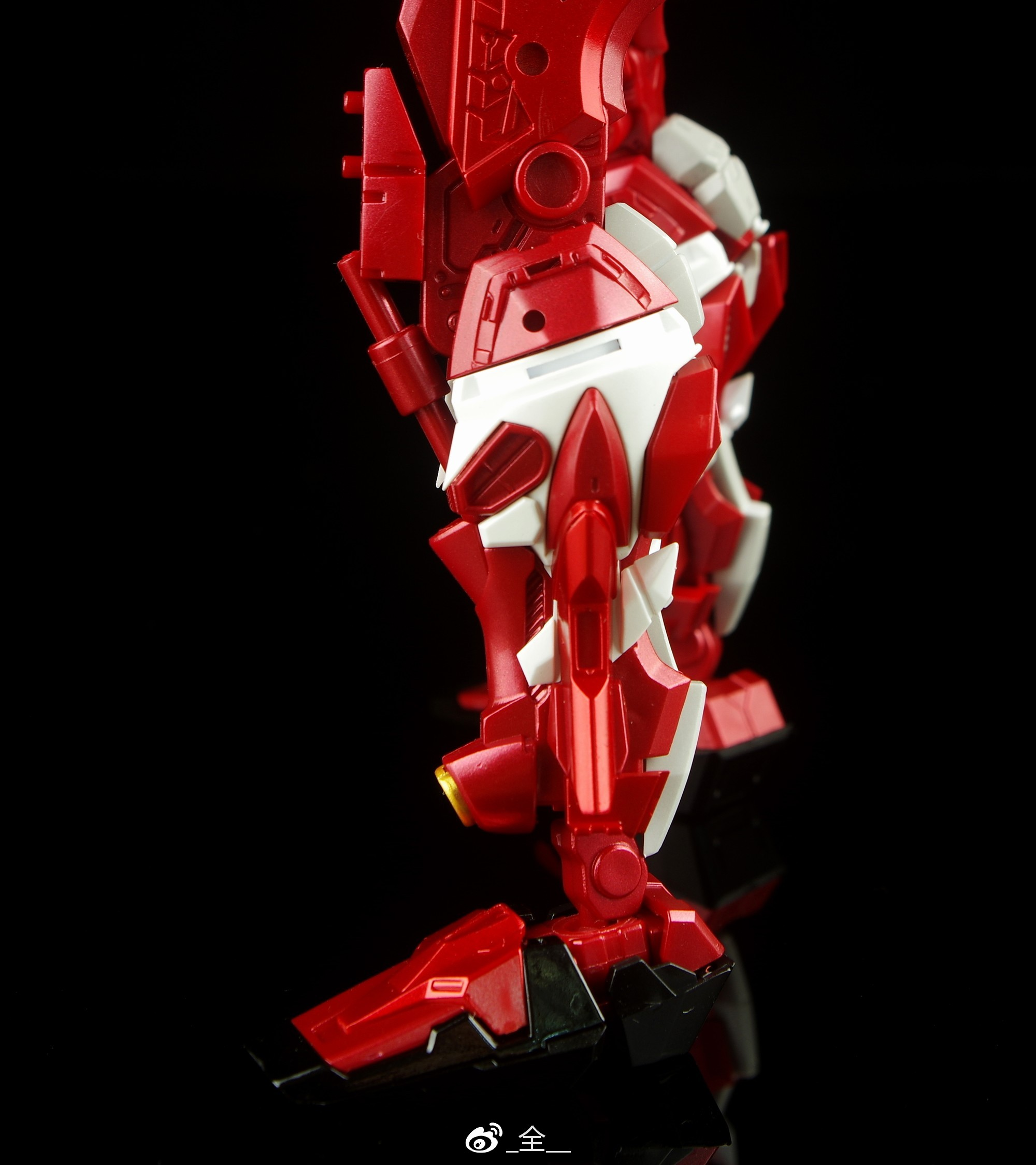 S246_3_MG_astray_red_kan_inask_017.jpg
