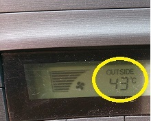 43度ですわ