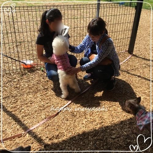 mini2018IMG_4462.jpg