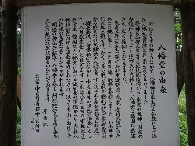 DSC_1029 (640x480)