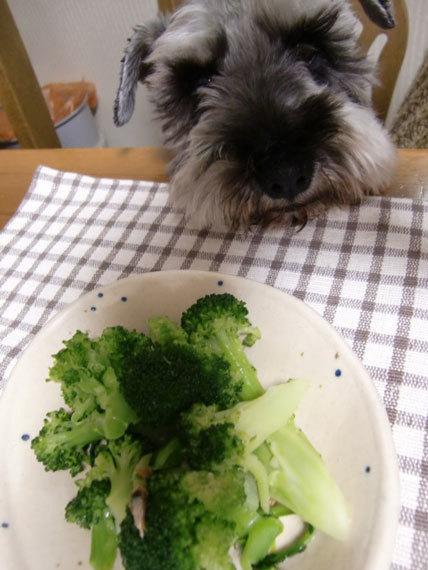 ブロッコリー食べたい