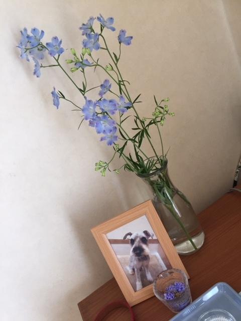 今度の供花