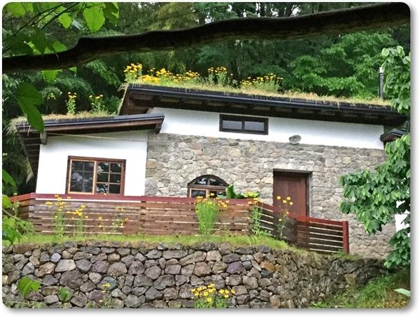 ルドベキァの草屋根