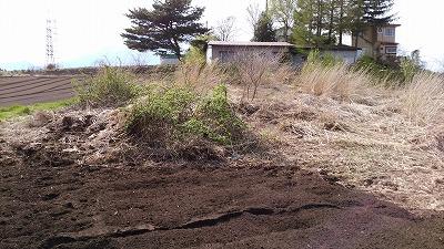 一本木 30年4月開墾完成 (3)
