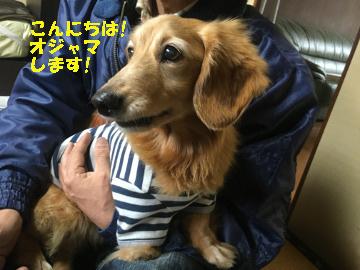 椎田と松江へ10