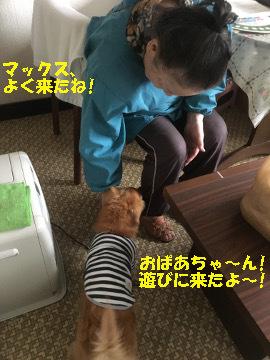椎田と松江へ11