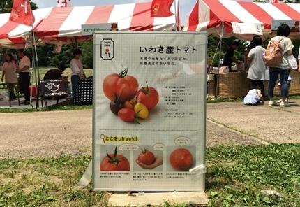 いわきトマトFes!! [平成30年6月9日(土)更新]17