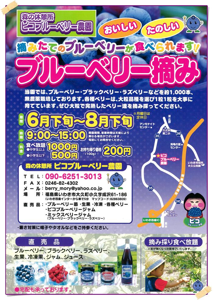 「森の休憩所 ピコブルーベリー農園」6月24日(日)オープン!! [平成30年6月22日(金)更新]1