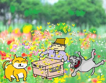 11蜂飼い