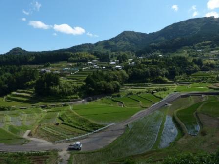 棚田風景 6