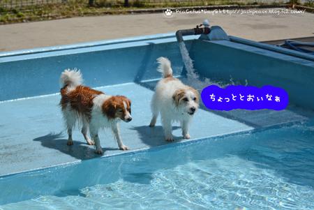 180419_yuasa1.jpg
