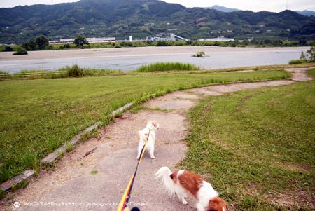 180605_yukimura10.jpg
