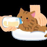 いらすとや猫ミルク