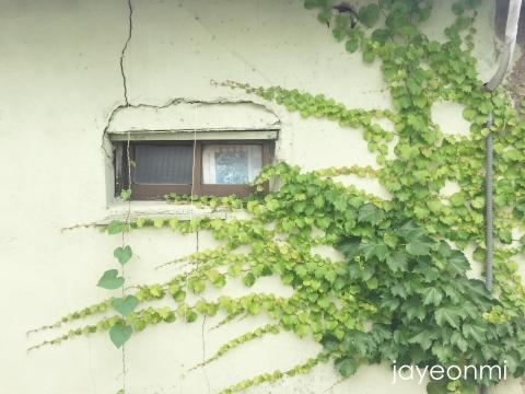 慶州_旅行_皇理団キル_1