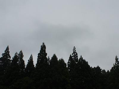 P7120308.jpg