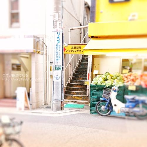 p5seichi11.jpeg
