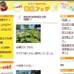 NHK福岡放送局番組ブログ
