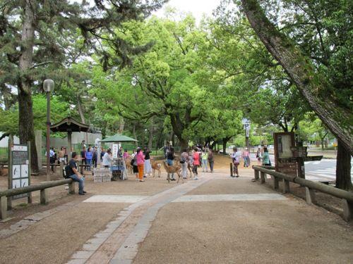 東大寺 (2)