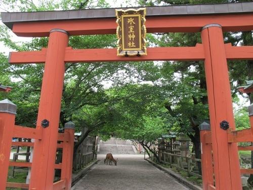東大寺 (3)