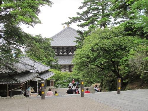 東大寺 (85)