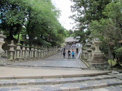 東大寺 (95)